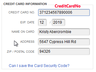 Customer credit card info